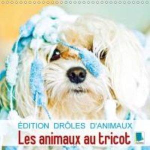 Édition drôles d\'animaux : les animaux au tricot (Calendrier mu