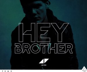 Hey Brother (2-Track)