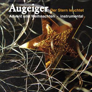 Advent und Weihnachten-Instrumental