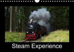 Steam Experience (Wall Calendar 2015 DIN A4 Landscape)