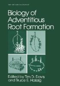 Biology of Adventitious Root Formation