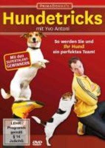 Ratgeber Hundetricks