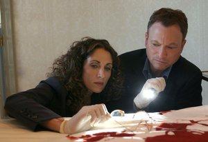 CSI: NY Season 5.2