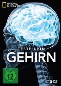 Teste dein Gehirn