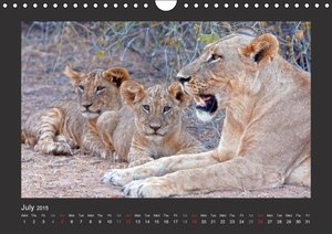 K E N Y A - UK Version (Wall Calendar 2015 DIN A4 Landscape)