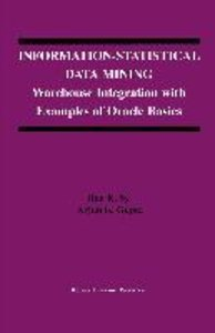 Information-Statistical Data Mining