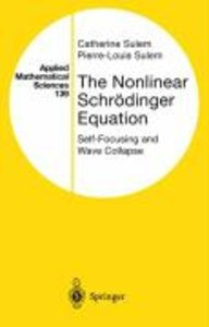 The Nonlinear Schrödinger Equation