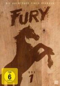Fury - Box 1 (Softbox-Version)