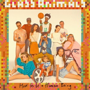 How To Be A Human Being (Vinyl)