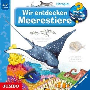 Wir Entdecken Die Meerestiere