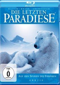 Arktis-Auf den Spuren der Eisbären