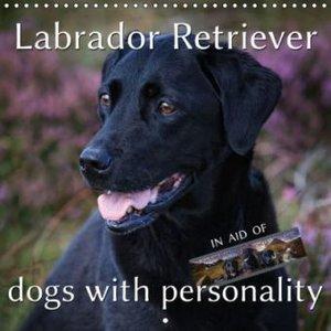 Labrador Retriever - Dogs with Personality (Wall Calendar 2015 3