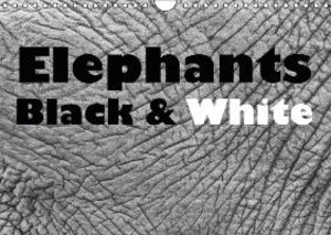 Elephants Black & White (Wall Calendar 2015 DIN A4 Landscape)