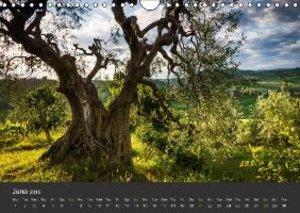 Tuscany - Landscape of the Soul (Wall Calendar 2015 DIN A4 Lands