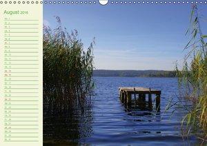 Natur - Impressionen Terminkalender von Tanja Riedel österreichi