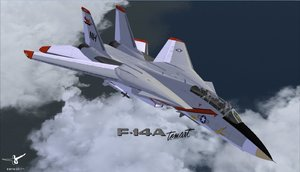 Flight Simulator X - F14 X