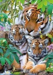 Tigerfamilie. Puzzle 1000 Teile