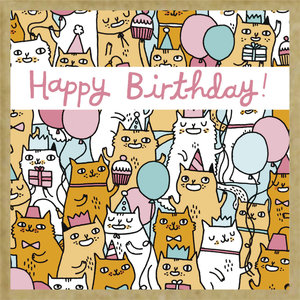 Green Gift Notes Birthday Cats Notecard Box