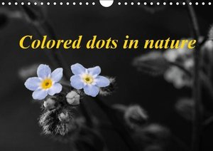 Potsch, R: Colored Dots in Nature / UK-Version