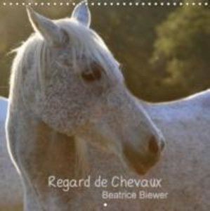 Regard de Chevaux (Calendrier mural 2015 300 × 300 mm Square)