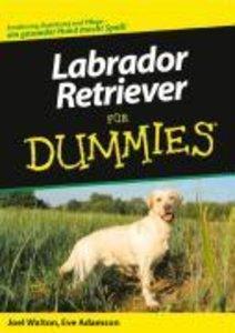 Labrador Retriever für Dummies