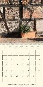Climbing Plants (Wall Calendar 2015 300 × 300 mm Square)