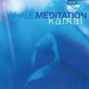 Whale Meditation
