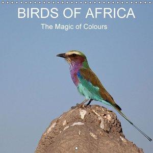 Birds of Africa - The Magic of Colours (Wall Calendar 2015 300 ×