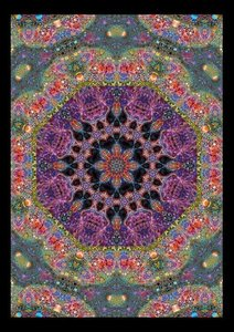 A Shamans Vision Starseed - Mandala Art (Poster Book DIN A4 Port