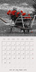 Black White Red (Wall Calendar 2015 300 × 300 mm Square)
