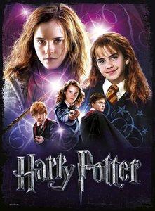 Wrebbit 3D(TM) Harry Potter Poster Puzzle GRANGER 500 Teile