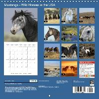 Mustangs - Wild Horses in the USA (Wall Calendar 2015 300 × 300 - zum Schließen ins Bild klicken