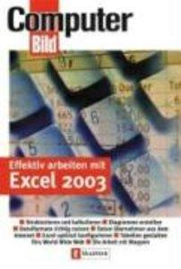 Effektiv arbeiten mit Excel 2003