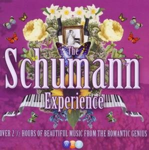 The Schumann Experience