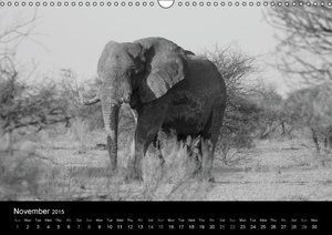 Elephants - Grey giants (Wall Calendar 2015 DIN A3 Landscape)