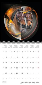 Equestrian bubbles (Wall Calendar 2015 300 × 300 mm Square)