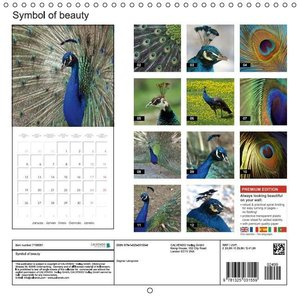 Symbol of beauty (Wall Calendar 2015 300 &times 300 mm Square)