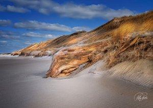 Dünen - an der Nordsee (Posterbuch DIN A3 quer)