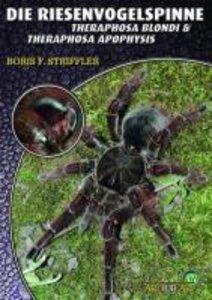 Riesenvogelspinnen