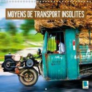 Moyens de transport insolites (Calendrier mural 2015 300 × 300 m