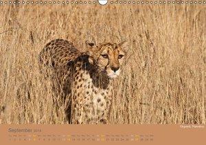 Africa Impressions / UK - Version (Wall Calendar 2015 DIN A3 Lan