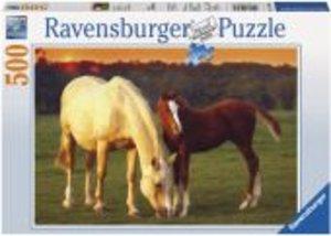 Schöne Pferde. Puzzle 500 Teile