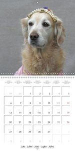 Top Dog Models (Wall Calendar 2015 300 × 300 mm Square)