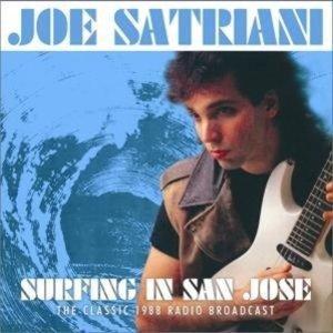Surfing In San Jose