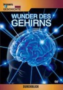 Wunder des Gehirns