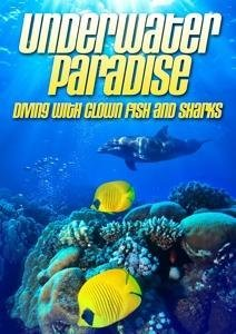 Underwater paradise: Diving with clown fish & shar