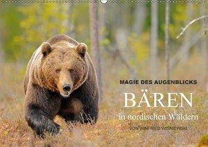 Magie des Augenblicks - Bären in nordischen Wäldern
