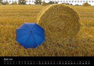 Blauer Schirm 2016 (Wandkalender 2016 DIN A4 quer)