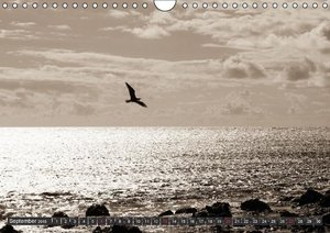 Horizons by the sea (Wall Calendar 2015 DIN A4 Landscape)