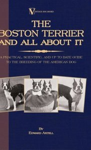 The Boston Terrier And All About It - A Practical, Scientific, A